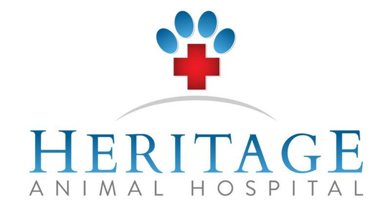 Animal Hospital Logo Design Company