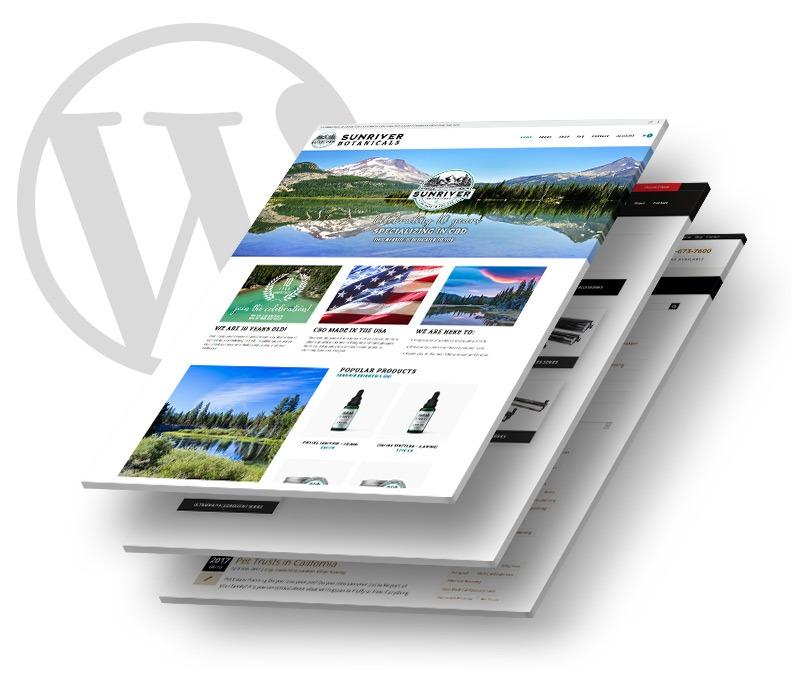 Orange County WordPress Web Designer